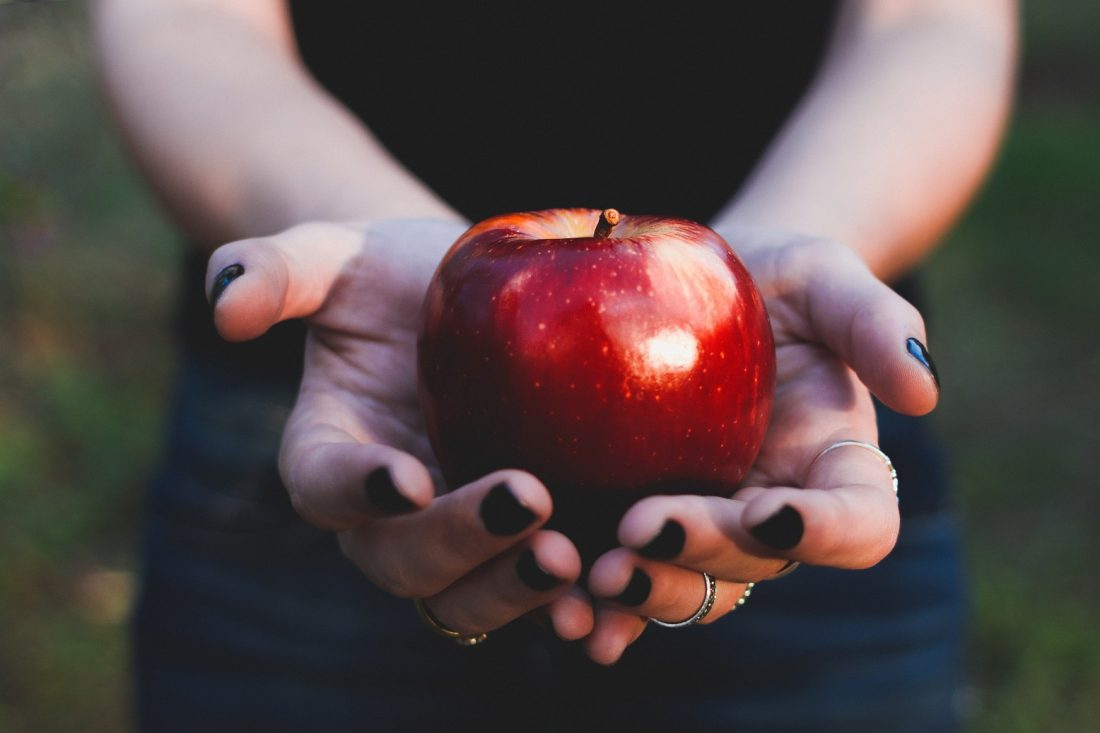 person holding apple in hands, the addict