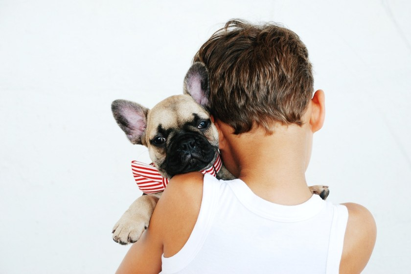 ease your pup's stress this fourth of july